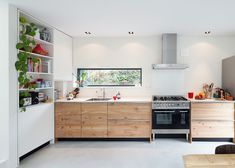 Kitchen inside a houseboat moored beside a wooded parkland in the Netherlands.