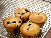Blueberry Muffins...super yummy!
