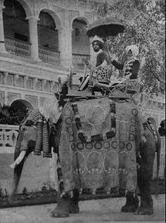 Anita Delgado riding an elephant History Of India, World History, India Before Independence, Duleep Singh, Indian Animals, War Elephant, Royal Indian, Indian Princess, Vintage India