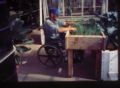Article all about gardening from a wheelchair, and horticultural therapy (didn't even know that existed!).