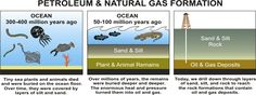 Three images, all about Petroleum & Natural Gas Formation.  The first image is about the Ocean 300 to 400 million years ago. Tiny sea plants and animals died and were buried on the ocean floor. Over time, they were covered by layers of sand and silt.  The second image is about the Ocean 50 to 100 million years ago. Over millions of years, the remains were buried deeper and deeper. The enormous heat and pressure turned them into oil and gas.  The third image is about Oil & Gas Deposits…