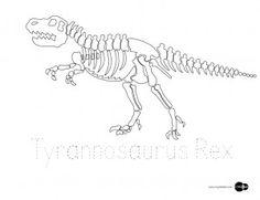 Kleurplaten Dino Skeletten.46 Beste Afbeeldingen Van Juf Frieke Dino S