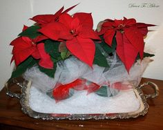 Poinsettia's embellished with tulle by Decor To Adore.