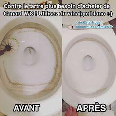 Heureusement, il existe des astuces efficaces pour détartrer et nettoyer les toilettes avec du vinaigre blanc. Voici 5 recettes maison pour désinfecter les WC et éliminer le calcaire sans efforts. Découvrez l'astuce ici : http://www.comment-economiser.fr/contre-tartre-pas-acheter-canard-wc-utilisez-vinaigre-blanc.html?utm_content=buffer83992&utm_medium=social&utm_source=pinterest.com&utm_campaign=buffer