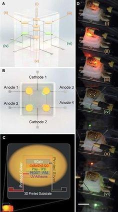 Princeton 3D Prints Quantum Dot LEDs