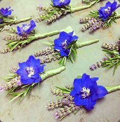 936003_10153335440645510_1500907844_n planet flowers