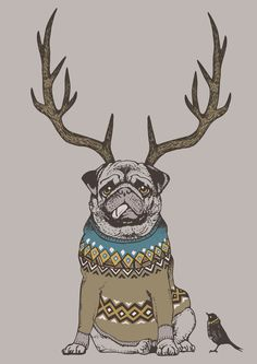 Deer Pug (For Sale)