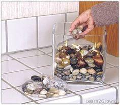 Grow Indoor Bulbs in Water | Forcing Bulbs Above Water: Gardening
