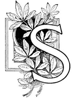 Vintage Typography and other free clip art! Colouring Pages, Adult Coloring Pages, Coloring Books, Decoupage, Embroidery Alphabet, Embroidery Patterns, How To Write Calligraphy, Calligraphy Letters, Quilling Patterns
