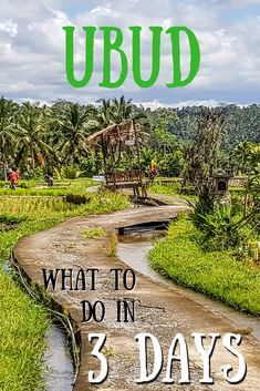 "It is a place best known as one of the locations used in Eat, Pray, Love but Ubud in Bali is much more than a place to just ""find yourself"". Humble and friendly locals, great food and amazing scenery. The question is how do you fit it all in with 3 days in Ubud?"