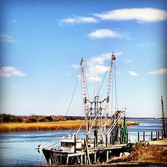 Coastal Georgia, beautiful marsh, blue sky, nothing better…