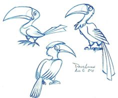 bird drawings | But as I'm drawing these birds I keep thinking I've seen this bird ...