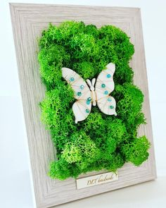 home decor in a white wood photo frame with green lichens & wood butterfly with wire&cristals Wood Butterfly, Wood Photo, White Wood, Projects To Try, Photo And Video, Decoration, Frame, Green, Handmade