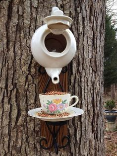 Tea Pot Bird feeder And House