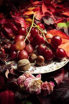 Früchte des Herbstes. Weintrauben Nüsse Bunte Blätter und Blüten