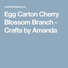 Egg Carton Cherry Blossom Branch - Crafts by Amanda