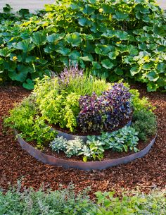 Tiered look  Plant herbs in a tiered raised bed for a great look and easy access.