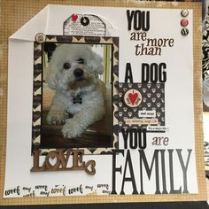 Dog Scrapbook Layouts, Scrapbook Quotes, Scrapbook Designs, Scrapbook Journal, Scrapbook Sketches, Scrapbook Paper Crafts, Scrapbook Cards, Scrapbooking Ideas, Box Photo