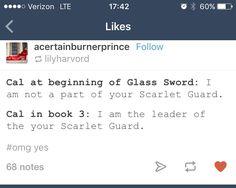 Cal in Glass Sword vs King's cage