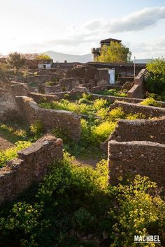 Abandoned, Vineyard, Places To Go, Beautiful Places, Spain, Castle, History, Nature, Zapatos Casual