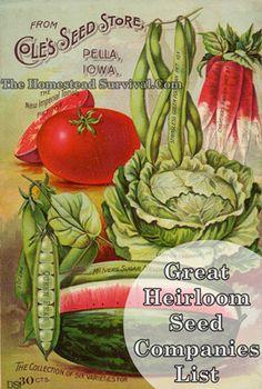 _Heirloom_seeds