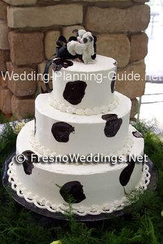 Cow Wedding Cake www.WeddingSearchesGuide.com