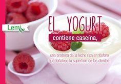 #Tip: El #yogurt ayuda a cuidar tus #dientes.  http://lemi.com.mx #salud #belleza #bienestar