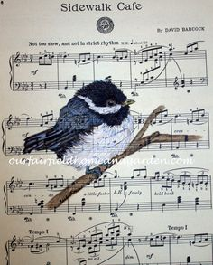 High quality color print of a Chickadee watercolorpainted on vintage sheet music by Barb Rosen* print is of bird and vintage sheet music onlyPrint size 8 1/2 in wide and 11 3/4 in tall. Fits a standard 8 X 10 mat or frame nicely.