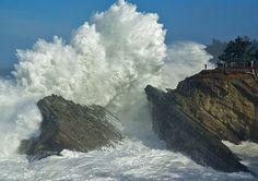 Shore Acres Oregon Coast Wave   Flickr - Photo Sharing!