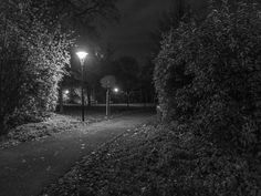 in the night by Martin Gindl on 500px