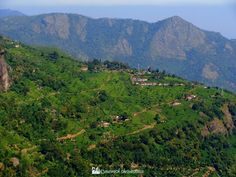 Panoramio - Photos by Avanish Shrivastava