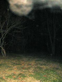 Taken in my yard, Dec. 6th, 2012, Joanne Harper #orbs, #paranormal #angels