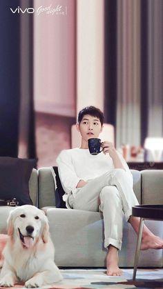This is the dream right here. Song Joong Ki and a dog. Korean Male Actors, Korean Celebrities, Asian Actors, Song Hye Kyo, Descendants, Song Joong Ki Cute, Soon Joong Ki, Sun Song, Descendents Of The Sun
