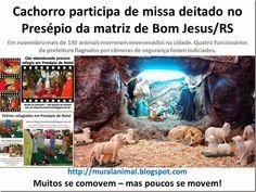Mural Animal: Cachorro participa de missa deitado no Presépio da...