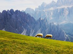 ...a tranquil life... South Tyrol