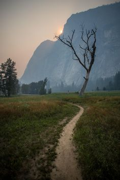 Apocalyptic vibes in Yosemite Valley [OC][36485472] franklinsteinnn https://ift.tt/2HhF0jo April 07 2018 at 08:36AMon reddit.com/r/ EarthPorn