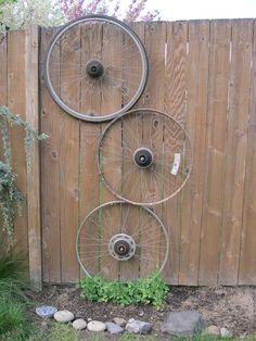 What a great idea for a trellis.  Go to a bike graveyard & get some old wheels, with or without the tires....