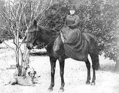Taking the horse and dog out on a stroll (ca.1890). | Florida Memory