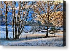 Morning Light by Carol R, Montoya Cades Cove at the beginnng of winter.
