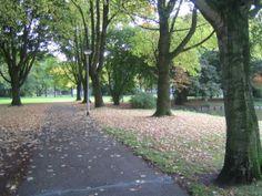 Stokhasseltpark Tilburg
