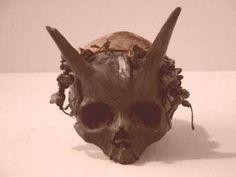 1-Boynuzlu kafatası - 1973 yılında yayınlanan Pursuit Dergisinin 6'ncı sayısındaki bir habere göre 1880 yılında Amerikanın Pensilvanya eyaletinde bulunan Bradford Kasabası yakınlarındaki Sayre höyüğünde birden fazla boynuzlu insan kafası yer yüzüne çıkarılmıştı.