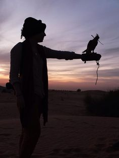 Falcon was heavier than he looked. And really cute, claws and all.  #desert #safari #dubai