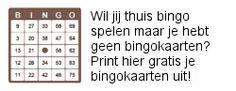 gratis bingokaarten uitprinten