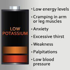 potassium importance - Google Search