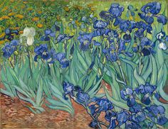 Irises; Vincent van Gogh (Dutch, 1853 - 1890); Saint-Rémy, France; 1889; Oil on canvas.