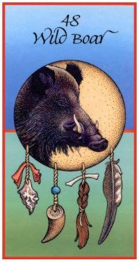 Wild Boar...teaches us to confront without fear, Ripping apart the denials and lies that appear, Testing courage, finding truth, its medicine will remain, A part of every human path, marking the victories we attain. (CONFRONTATION)
