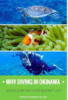 Why Diving in Okinawa, Japan Should Be On Your Bucket List via @https://de.pinterest.com/Laurel_Robbins/