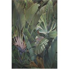 Larghevedute Lush Tropical Forest Wallpaper (£3,315) ❤ liked on Polyvore featuring home, home decor, wallpaper, green, blossom wallpaper, tropical leaves wallpaper, green home decor, canvas home decor and flower stem
