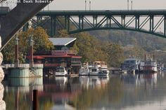 tennessee river knoxville tn - Google Search