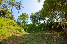 -Short drive to famous Komune Beach, Keramas Beach, around 20 minutes to Sanur or Ubud, 5 minutes to Sukawati Traditional Market  -Terracing land, house drawing is available -Below market price for free hold land at almost 1100 m2 for only  AUD 320.000  -Access road: asphalt 6 m wide